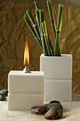 Aroma oil lamp and horsetail