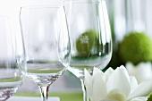 Weingläser mit Blume auf einem Tisch