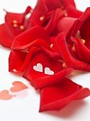 Rote Rosenblätter und Herzen