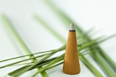 An incense cone and papryus sedge