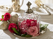 Roses under a glass dome