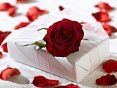 Gift in white wrapping paper with red rose