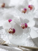 Elegant place-setting with white orchid in crystal glass