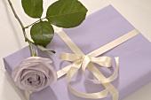 Geschenk und lila Rose