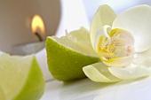 Duftlampe mit Limette und Orchidee
