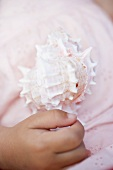 Child's hand holding sea shell