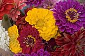 Bunch of summer flowers (detail)