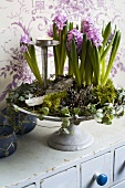 Flower arrangement with hyacinths