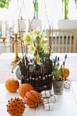 Christmas rose & clove-studded oranges (Christmas decorations)