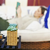Plant in basket, woman lying on sofa reading in background