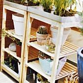 Plants on shelving