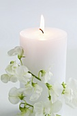 Burning white candle with sweet peas