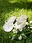 Silver flip-flops on grass with daisies