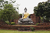 Buddha statue in park (Thailand)