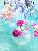 Various flowers in vases
