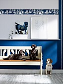 Dogs on and next to rustic wooden bench against blue and white wall with frieze