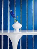 Delphinium in vase on white table against blue and white striped wallpaper