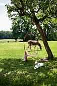 Blick auf Wiese mit Baumschaukel, Hund & Esel