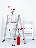 Aluminium ladders and a vase of flowers