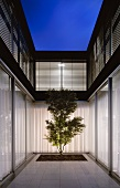 Modern courtyard design -- a single tree in the evening light and closed curtains at the terrace windows