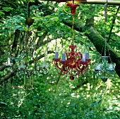 Coloured crystal chandeliers hanging in a tree in a wild garden