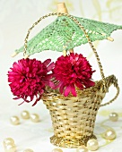 Echinacea flowers (Echinacea Southern Belle) in a silver basket