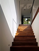 A play of light and shadow on a wall and on a flight of stairs