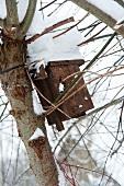 Nisthäuschen für Vögel im Winter