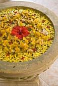 Yellow and red flowers floating on water in antique stone basin