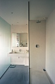 Modern bathroom with glass shower partition