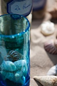 Maritime decoration and snail shells