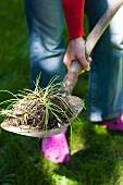 A woman with a garden spade