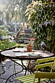 A bird stealing leftover food from a garden table