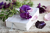 Book with sweet peas and rose petals