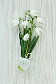 Snowdrops tied with heart-shaped pendant
