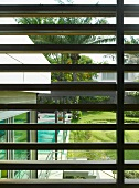 View of house corner, palm tree garden and swimming pool through wooden sun shade louver blinds