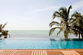 View of infinity pool in front of sea and palm trees from wooden deck