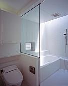 Abgetrennter Bade- und Duschbereich neben der Toilette in einem Badezimmer