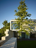Modern house with flat roof