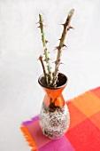 Schmale Vase mit abgeschnittenen, stacheligen Rosenzweigen