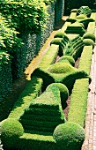 Spectacular gardens with topiary hedges and paved paths