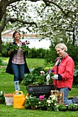 Two women planting geraniums in pots in garden