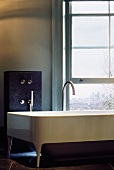Extravagant bathtub with designer fittings in front of window with a view