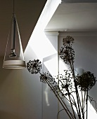 Dried seed heads and pendant lamp with glass shade