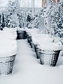 Eingeschneite Körbe im Garten