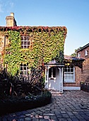 Historic, English house with vine-covered brick facade