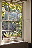Classic, English sash window with wooden interior shutters