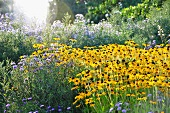 Flowers and herbaceous borders in park (Killesbergpark, Stuttgart, Germany)