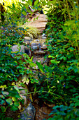 Narrow, plant-lined stream running over stone steps