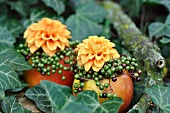 Autumnal arrangement with apples as vases decorated with flowers & berries